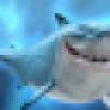 海滩上的鲨鱼